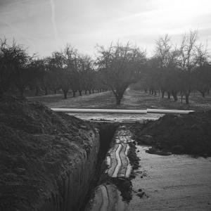 blog-farm-water-steward-irrigation